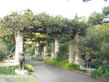 1-sydney_botanicgarden_5
