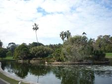 1-sydney_botanicgarden_6