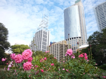 1-sydney_skyline_1