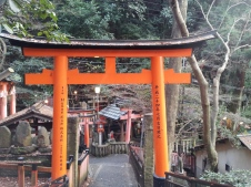 Kyoto_Inari14