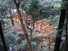 Kyoto_Inari4