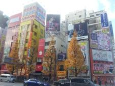 Tokyo_Akihabara5